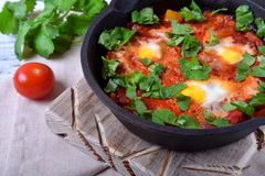 Shakshuka with tomato sauce and quail eggs topped with cilantro in a cast iron pan. Jewish cuisine meal stock image