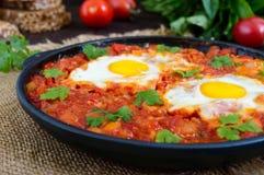 Shakshuka - un plat des oeufs sur le plat à une sauce des tomates, du piment, des oignons et des assaisonnements Photographie stock libre de droits