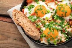 Shakshuka z jajkami, pomidorem i pietruszką w żelaznej niecce, Shakshuk Zdjęcie Royalty Free