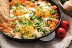 Shakshuka z jajkami, pomidorem i pietruszką w żelaznej niecce, Shakshuk Fotografia Royalty Free