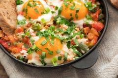 Shakshuka z jajkami, pomidorem i pietruszką w żelaznej niecce, Shakshuk Fotografia Stock