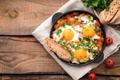 Shakshuka z jajkami, pomidorem i pietruszką w żelaznej niecce, Shakshuk Obraz Royalty Free