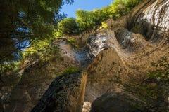 Shakuranskiy瀑布在绿色热带黄杨木潜叶虫森林里在阿布哈兹 库存照片