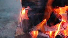 Shaky close up of logs burning on a campfire stock footage