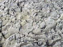 Shale Background. Vertical wall of shale photographed on the ocean shore in southern British Columbia Stock Photo