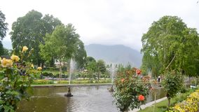 Shalimar Bagh, Mughal garden, January 10 2019: Inside view of Shalimar Bagh of horticulture, also called the. `Crown of Srinagar`, located on Srinagar city in royalty free stock image