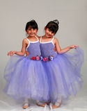 Shall We Dance Royalty Free Stock Photos