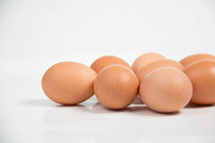 Shall raw eggs On White Background. Stock Images