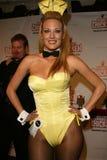 Shallan Meiers на «партии старта DVD цыпленка робота». Хором плейбоя, Los Angeles, CA. 03-27-06 Стоковые Изображения RF