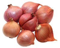 Shallot. Group of small red shallot onions isolated on white stock images