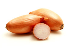Shallot Royalty Free Stock Images
