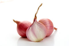 Shallot(Allium cepa L.),leaf form and texture Royalty Free Stock Image