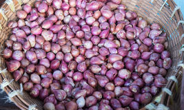 Shallot in the basket from the street market Royalty Free Stock Image