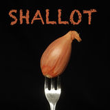 Shallot on a fork Stock Images