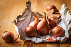 Shallot Stock Photo