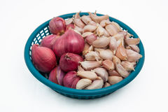 Shallot and Garlic use for food ingredient. Royalty Free Stock Image