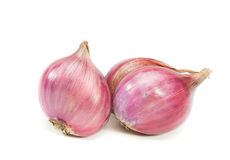 Shallot isolated. Stock Images