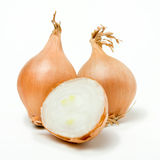 Shallot Line Up Stock Photography