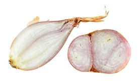 Shallot onion bulb cut in half inside cross and longitudinal section isolated on white stock images