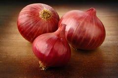 Shallot onion Royalty Free Stock Photography
