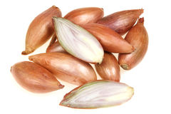 Shallot onions Royalty Free Stock Photography