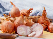 Shallot onions Royalty Free Stock Image