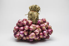 Shallot onions in a group. Stock Images