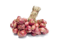 Shallot onions. In a group on wood isolated on white Stock Photos