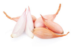 Shallot onions and half Royalty Free Stock Photos
