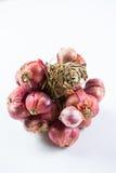 Shallot onions Stock Photo