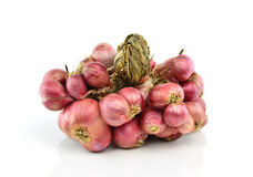 Shallot onions on white background.  Royalty Free Stock Images