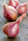 Shallot onions. On wooden background,close up view royalty free stock photos