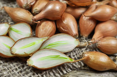 Shallot onions. On a wooden and jute background royalty free stock photos