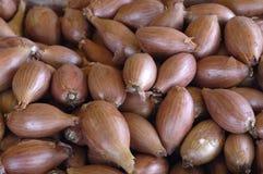 shallots рынка Стоковая Фотография RF