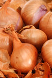Shallots Royalty Free Stock Photos
