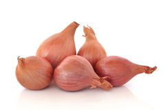 Shallots Royalty Free Stock Photo