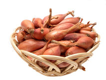 Shallots. Basket of consumer shallots on white background Stock Photos