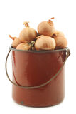 Shallots in a brown enamel cooking pot Royalty Free Stock Photos