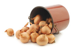 Shallots in a brown enamel cooking pot Royalty Free Stock Images
