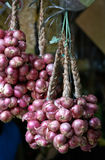 Shallots hung up on display Royalty Free Stock Photos