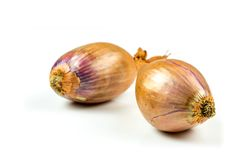 Shallots onion on a white background Stock Photos