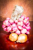 Shallots and onion Stock Photography
