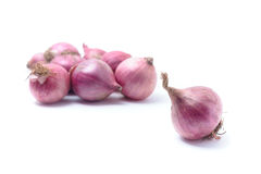 Shallots, Raw and uncooked isolated on white background Stock Image