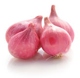 Shallots, Raw and uncooked on white background Royalty Free Stock Photos