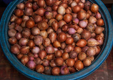 Shallots are sold in markets. Royalty Free Stock Photography