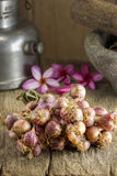 Shallots. The shallots on  top table Royalty Free Stock Images