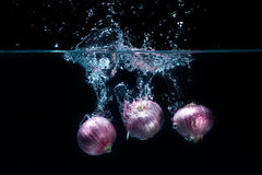 Shallots Vegetables, dropped in fresh water Royalty Free Stock Photography