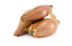 Shallots on white. Organic Shallots / Onions isolated on a white background Royalty Free Stock Image