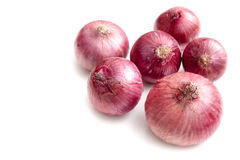 Shallots on white background  Royalty Free Stock Photography
