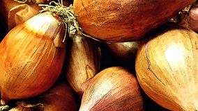 Shallots, Youtube Channel Art Banner. 2560 x 1440 , Close up Food Subject royalty free stock photos